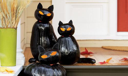 Fekete macska halloween töklámpás